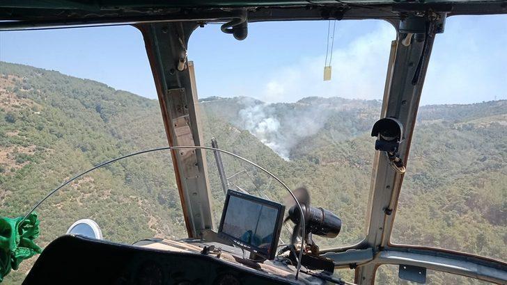 GÜNCELLEME - İzmir'de çıkan orman yangını kontrol altına alındı