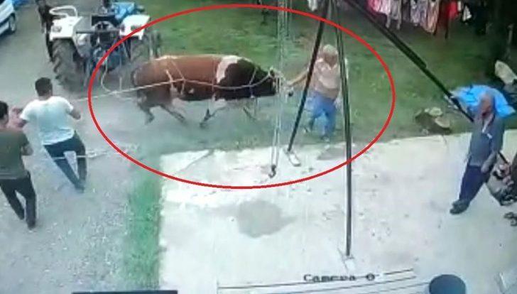 Kurbanlık boğanın saldırdığı kişi hayatını kaybetti