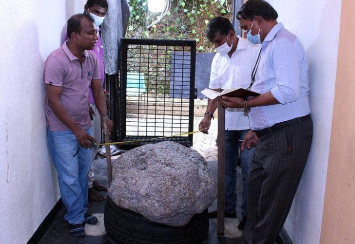 Arka bahçede yatan servet! Sri Lanka'da dünyanın en büyük safiri bulundu