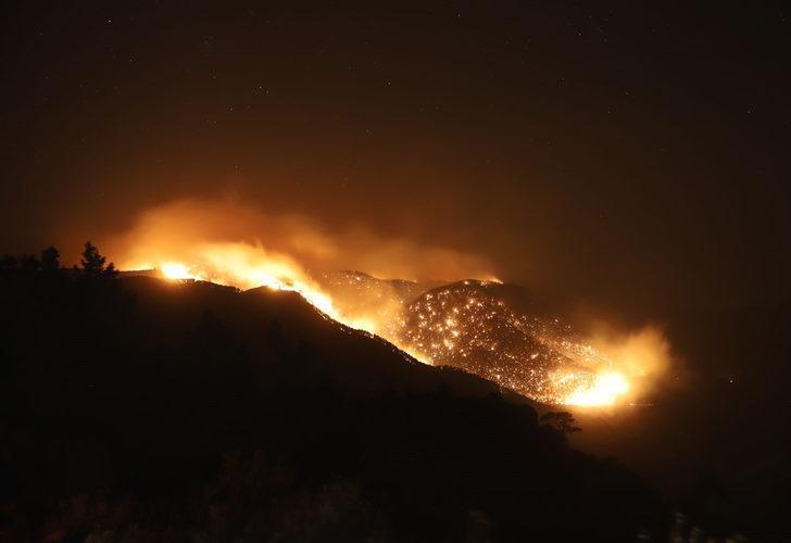 AK Parti Sözcüsü Çelik'ten yangınlarla ilgili açıklama