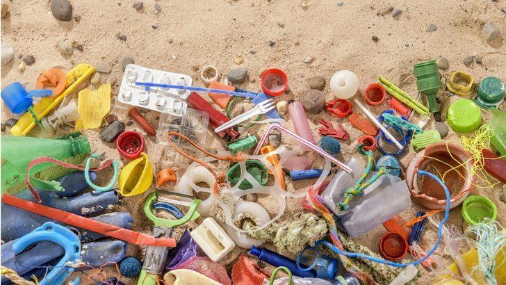 Plastik yiyen bakteri ve mantarlar atık sorununa çözüm olabilir mi?