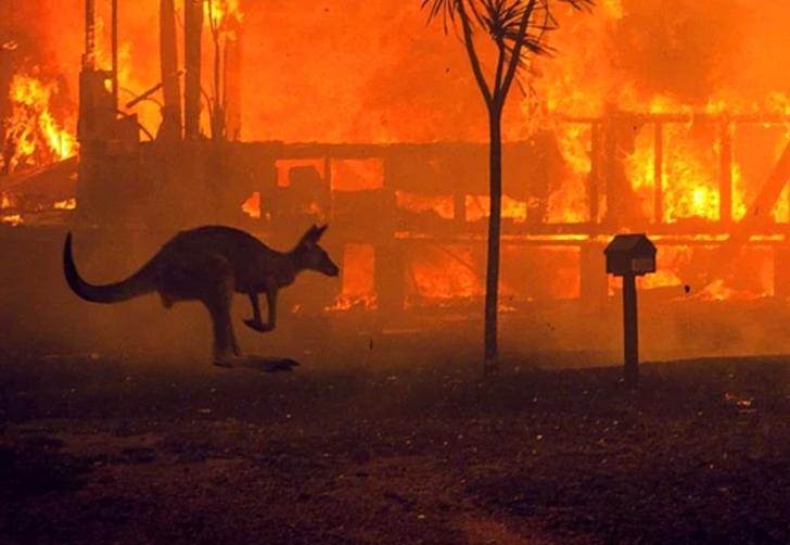 Dünyanın en büyük yangınları! Tarih boyunca büyük yangınlarla başa çıkmak için neler yapıldı?
