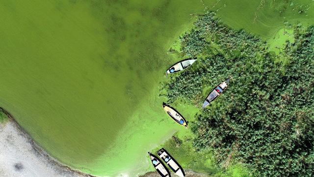 Korkutan görüntü! Göl, yeşile döndü