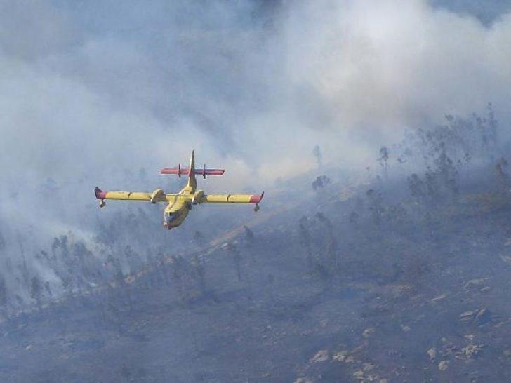 Yunanistan'daki yangınlara Türkiye'den uçak desteği sözü