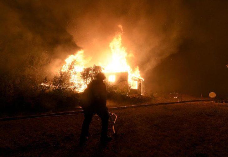 Bir aydır devam ediyor! California'daki yangında yok olan ormanlık alan 200 bin hektara yaklaştı