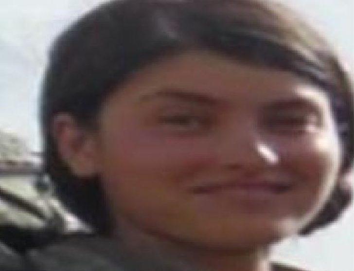İçişleri Bakanlığı duyurdu! Suikastçı 'Rojin Amed' öldürüldü