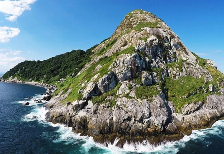 Dünyanın en tehlikeli adası! Brezilya'daki Queimada Grande Adası'na (Yılan Adası) kimse giremiyor