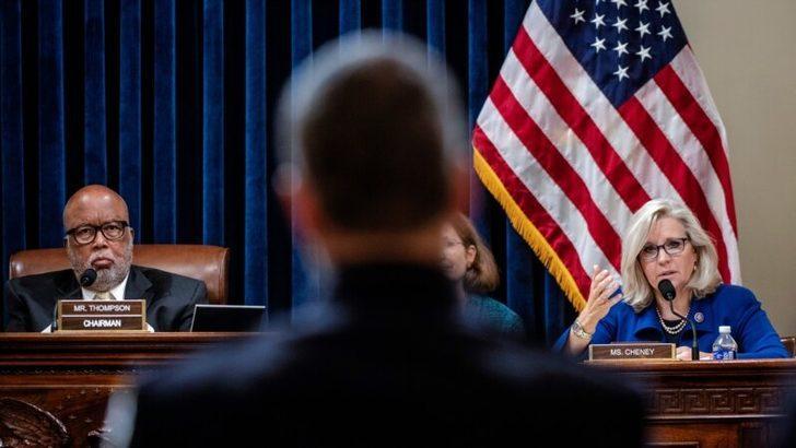 Cheney 6 Ocak Komisyonu Başkan Yardımcısı