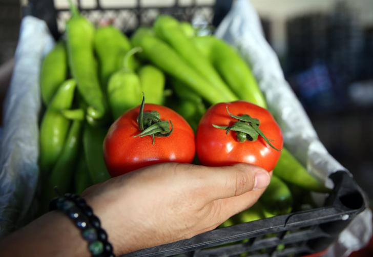 Türkiye'de yetişen domates ve biber 45 ülkeye ulaştırılıyor