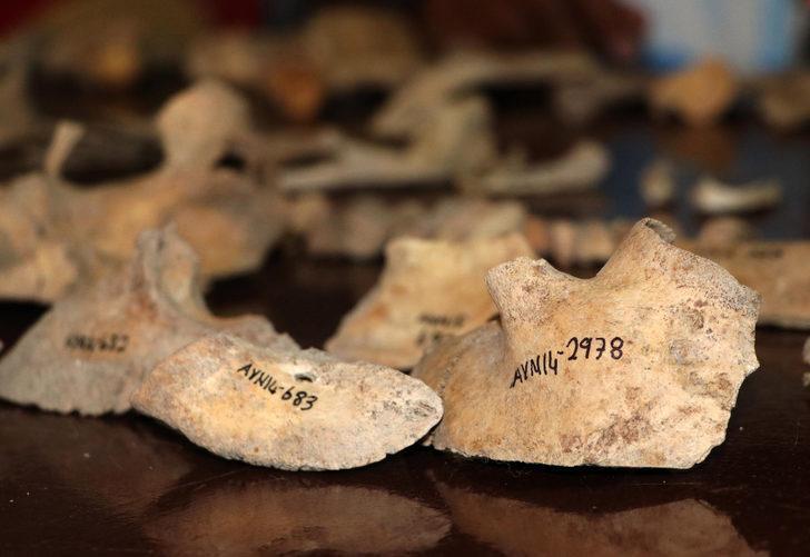 Urartuların son görkemli kalesiydi! Çöplüklerinde bulunanlar şaşkına çevirdi: Çok çarpıcı