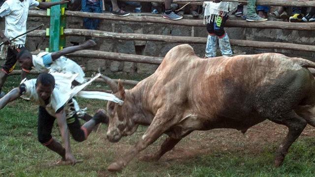 Ülke şokta! Sığır hırsızları ile köylüler çatıştı: En az 46 ölü