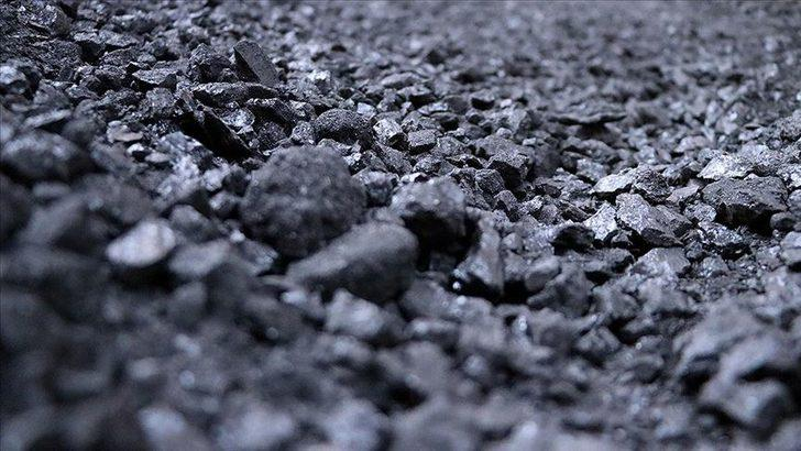 Trabzon'da kömür eylemi