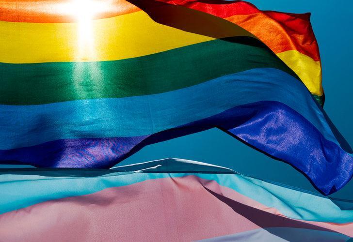 İsviçre'de eşcinsel evlilik referandumu: Yüzde 64 evet