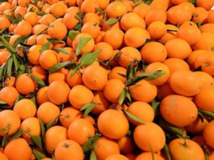 Rusya'dan portakal hamlesi mi geliyor?
