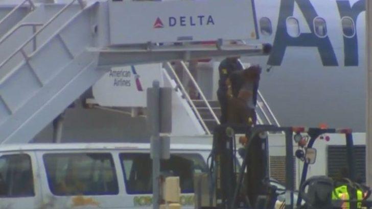Türk yolcu ABD uçağında olay çıkardı