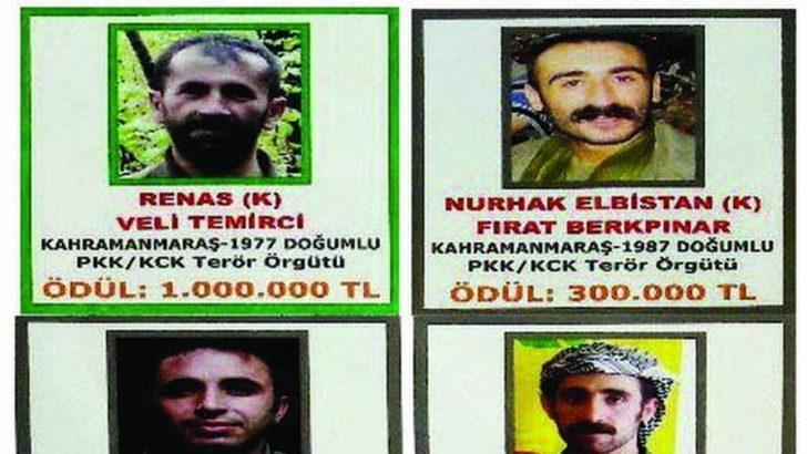 Başına 1 milyon lira ödül konan PKK'lı öldürüldü