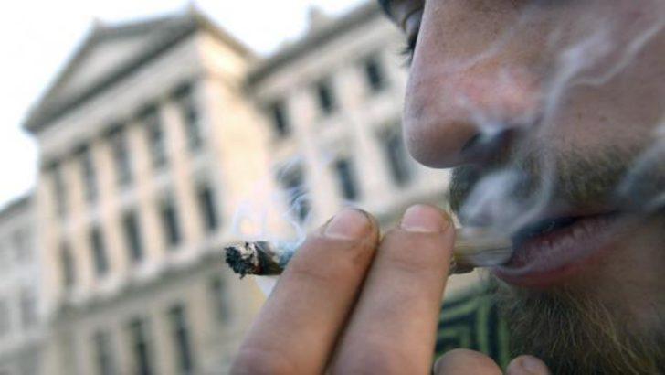 Uruguay'da parlamento 'yasal marihuanayı' onayladı