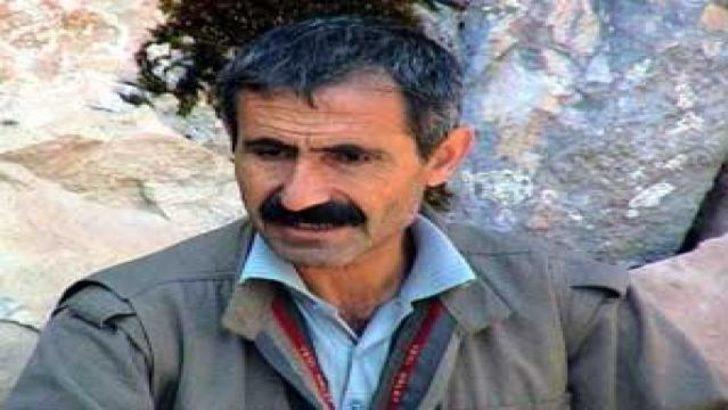 O PKK''lının cenazesi Muş'a getirildi