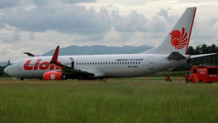 Uçak ineğe çarptı, pistten çıktı!
