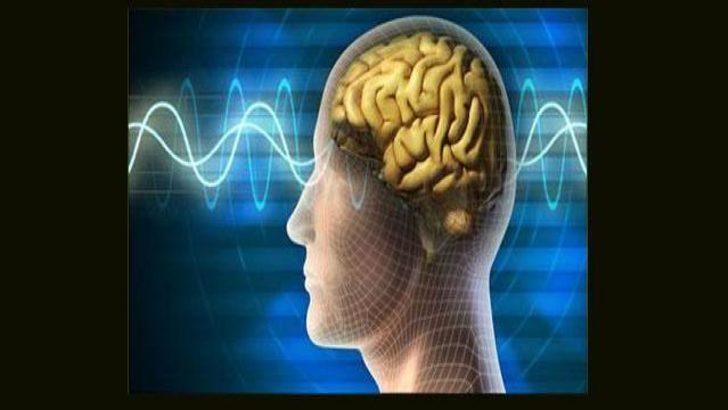 Ölüm anında beyin fonksiyonları artıyor