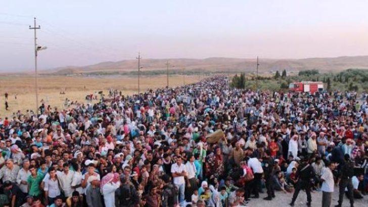 Suriye'deki Kürtler Kuzey Irak'a göçüyor