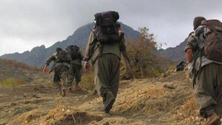 PKK'dan her gün 100 eylem