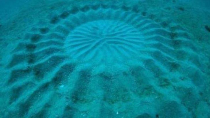 Su altındaki gizemli şeklin sırrı çözüldü!..