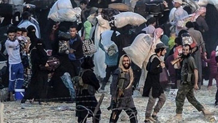 IŞİD'in 'okul'una Bakan Ala'dan doğrulama