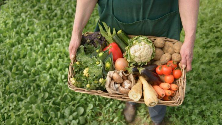 Organik tarım hakkında doğru sandığımız 10 abartı bilgi