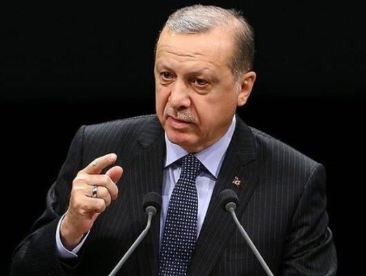 Horozcular Erdoğan'a isyan etti