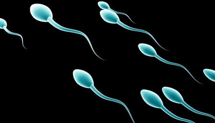 Sperm sağlığınıza dikkat edin