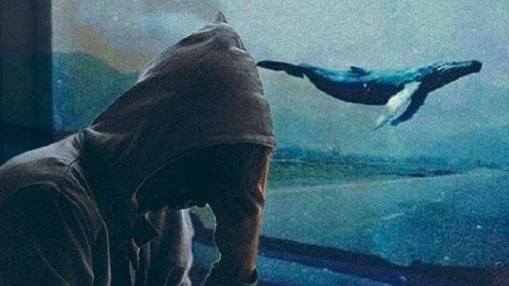 BTK Başkanı'ndan 'Mavi Balina' oyunu için korkutan açıklama