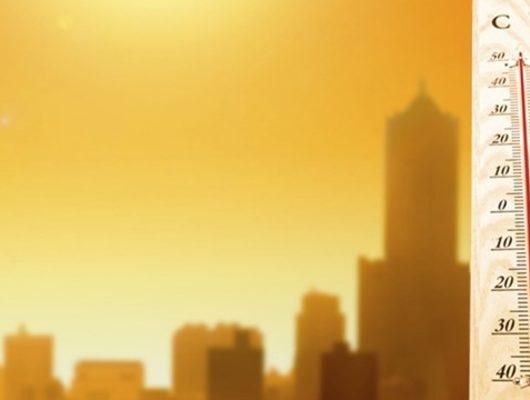 Yaz tehlikede! Eğer sıcaklıklar düşmezse durum vahim…