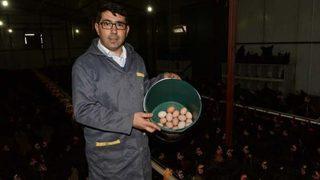3 tavukla başladı, 3 bin tavuklu çiftlik sahibi oldu