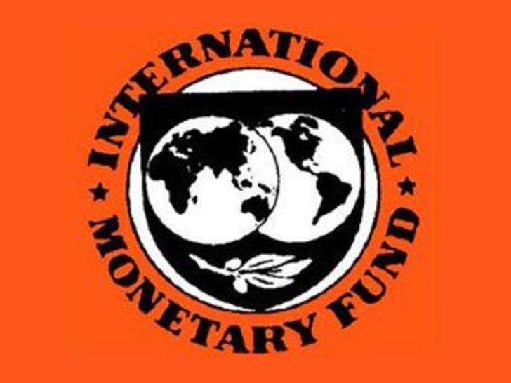 IMF mali disiplin istedi