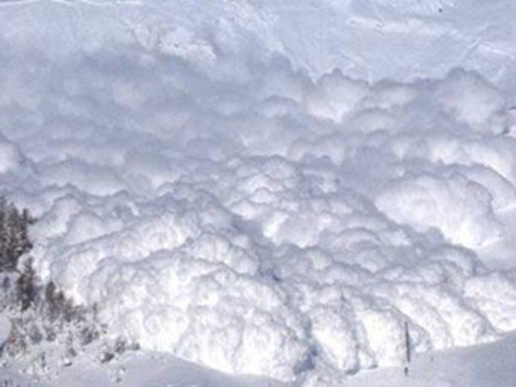 Erzurum'da meteorolojik çığ uyarısı