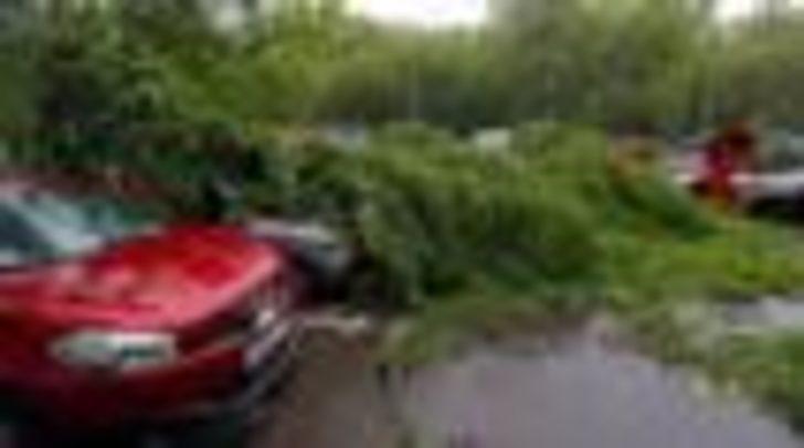 Moskova'da '100 yılın en ölümcül fırtınası'