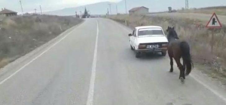 Atı otomobilinin arkasına bağlayıp trafiğe çıktı