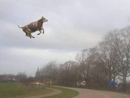 Hollanda ve Almanya'da fırtına önüne geleni uçurdu