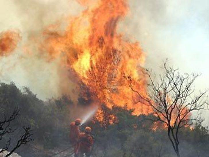 Urla'daki yangın: Evler boşaltılıyor
