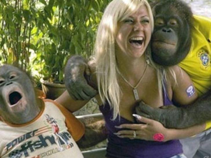 Hayvanlar sevgiyi biraz abartınca...