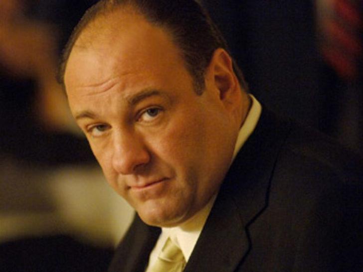 Ünlü aktör James Gandolfini hayatını kaybetti