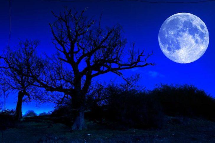 31 Ocak Tam Ay Tutulması