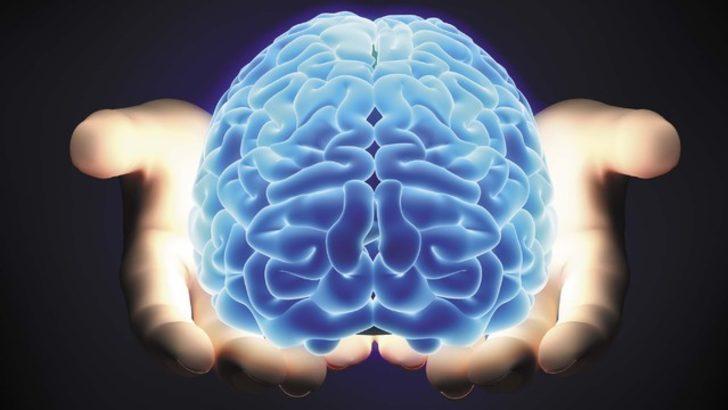 Beyniniz nasıl çalışır? Efsaneler ve gerçekler!