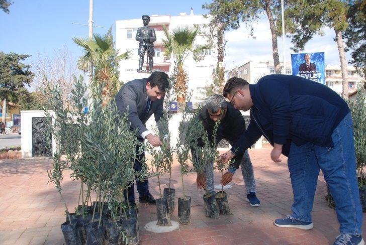 Zeytin Dalı Harekatı'na 10 bin zeytin fidanıyla destek