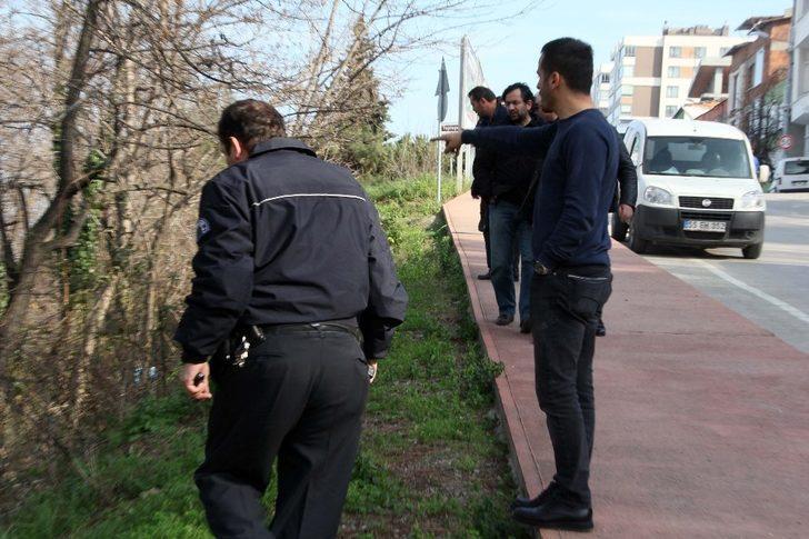 Samsun'da dev domuz alarmı