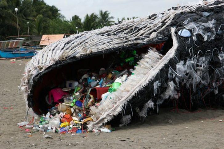 Okyanuslardaki mikroplastikler balinaların hayatını tehlikeye atıyor