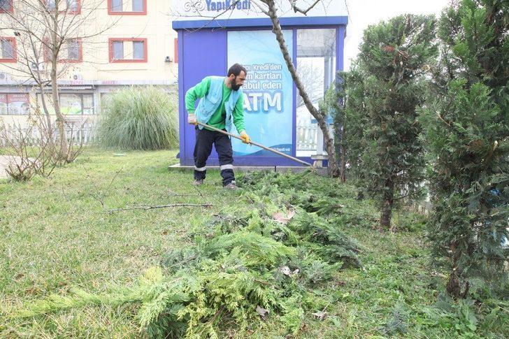 Başiskele Belediyesi ekipleri, yeşil bir kent için çalışıyor