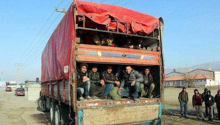 Çift katlı kamyon kasasından 177 kaçak çıktı