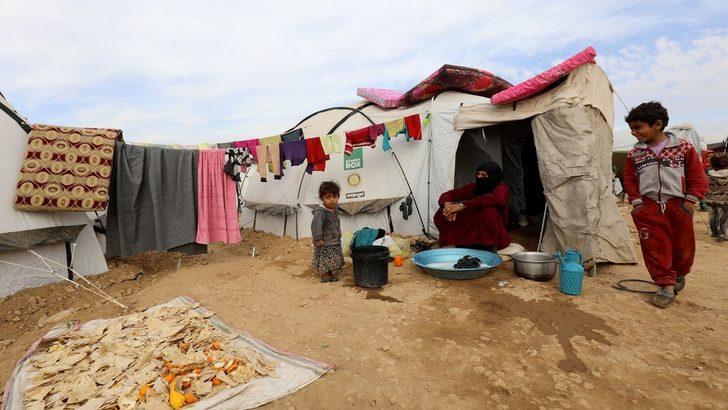 HRW: Suriyeli Kürtlerin elinde IŞİD üyelerinin eşi ve çocuğu olan 800 kişi var, bazıları Türkiye vatandaşı
